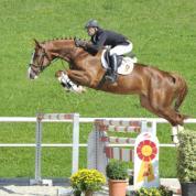 Monello v. Monte Bellini-Escudo I