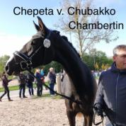 Chepeta v. Chubakko-Chambertin, Reservesiegerstute Landesstutenschau in Weilheim/Teck
