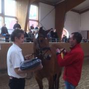 Hengst von Catoki-Ligorett, Sieger FreiSprWB ZfdP 2016