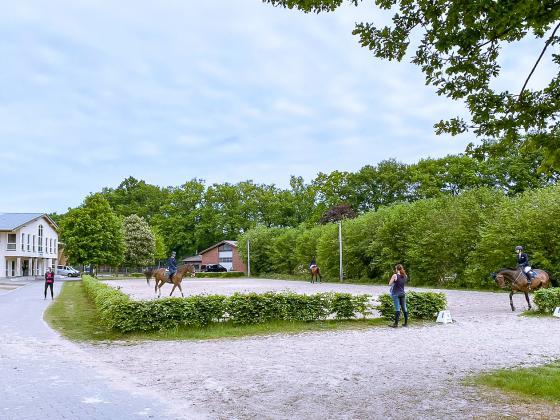 Late-Entry unter besonderen Maßnahmen in Riesenbeck