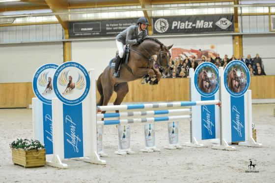 Foto: Equitaris | Christian und Zineday gewannen mit einer 8,7 die Springpferdeprüfung der Klasse A**.